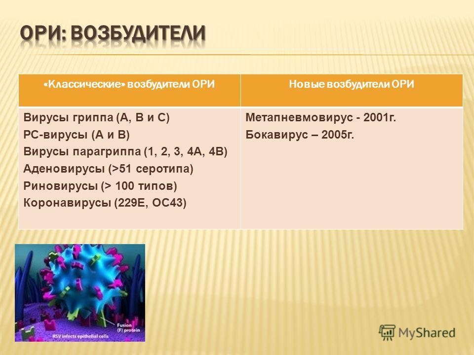 «Классические» возбудители ОРИНовые возбудители ОРИ Вирусы гриппа (А, В и С) РС-вирусы (А и В) Вирусы парагриппа (1, 2, 3, 4А, 4В) Аденовирусы (>51 серотипа) Риновирусы (> 100 типов) Коронавирусы (229Е, ОС43) Метапневмовирус - 2001г. Бокавирус – 2005