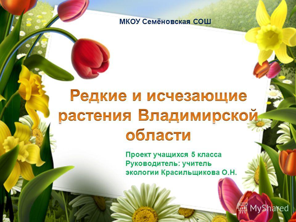 Проект учащихся 5 класса Руководитель: учитель экологии Красильщикова О.Н. МКОУ Семёновская СОШ
