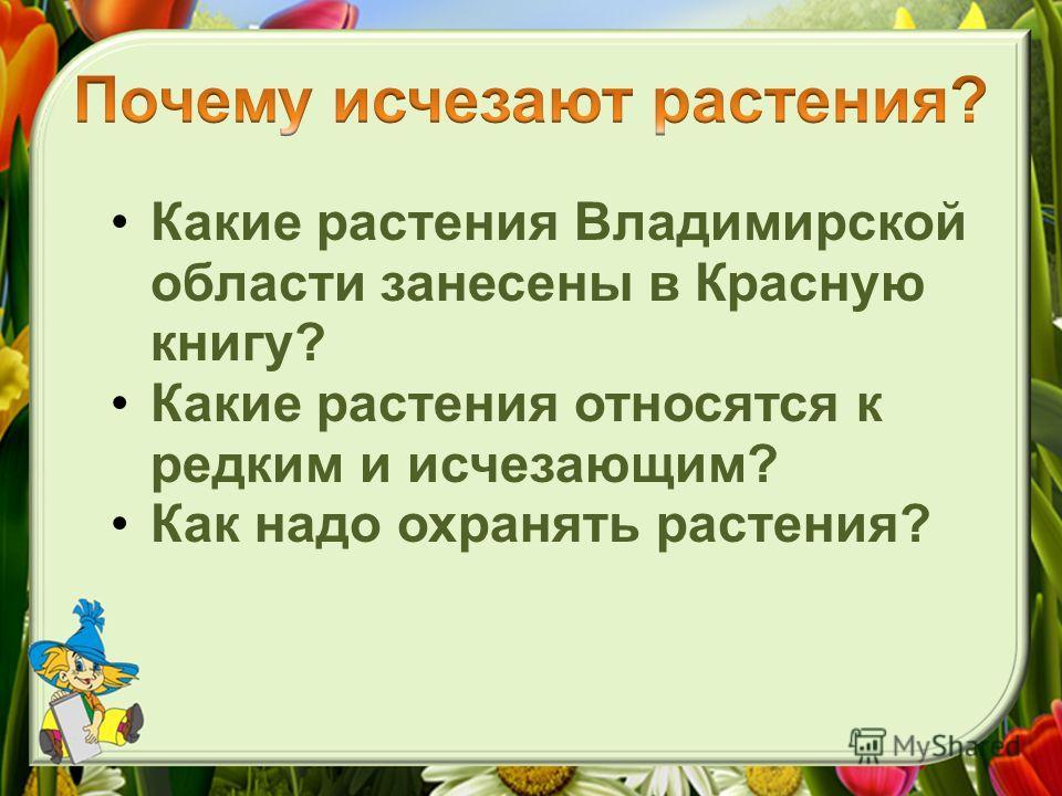Какие растения Владимирской области занесены в Красную книгу? Какие растения относятся к редким и исчезающим? Как надо охранять растения?
