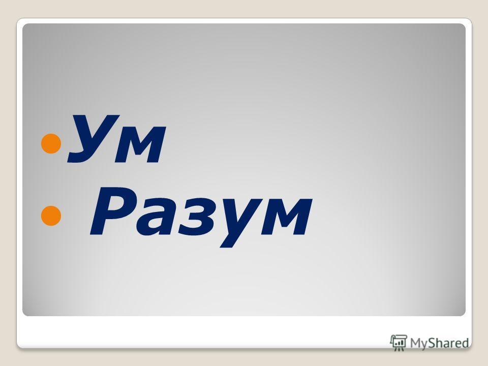 Ум Разум