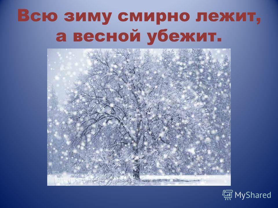 Всю зиму смирно лежит, а весной убежит.
