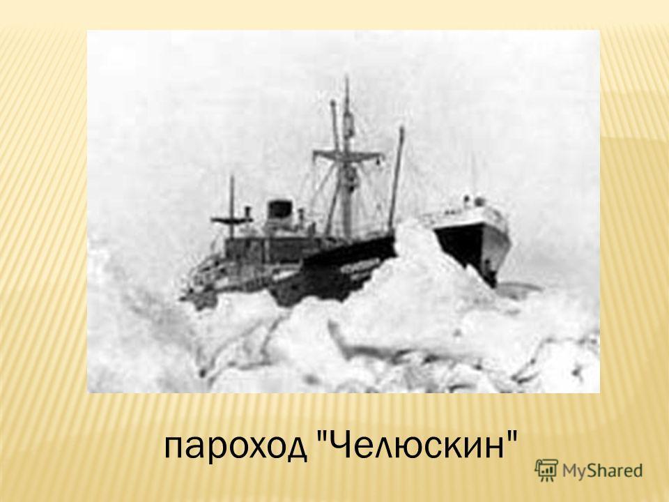 пароход Челюскин