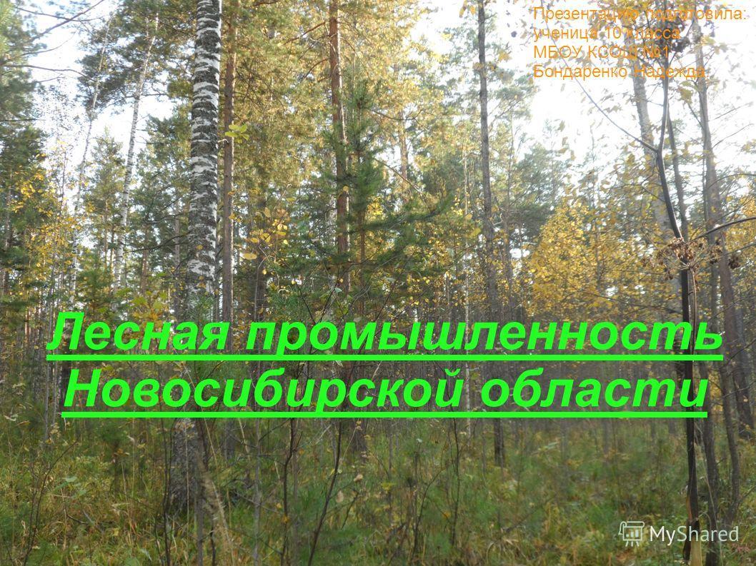 Лесная промышленность Новосибирской области Презентацию подготовила: ученица 10 класса МБОУ КСОШ 1 Бондаренко Надежда.