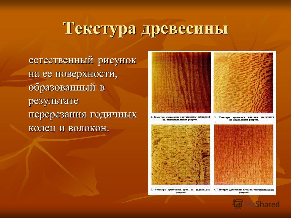 Текстура древесины естественный рисунок на ее поверхности, образованный в результате перерезания годичных колец и волокон. естественный рисунок на ее поверхности, образованный в результате перерезания годичных колец и волокон.