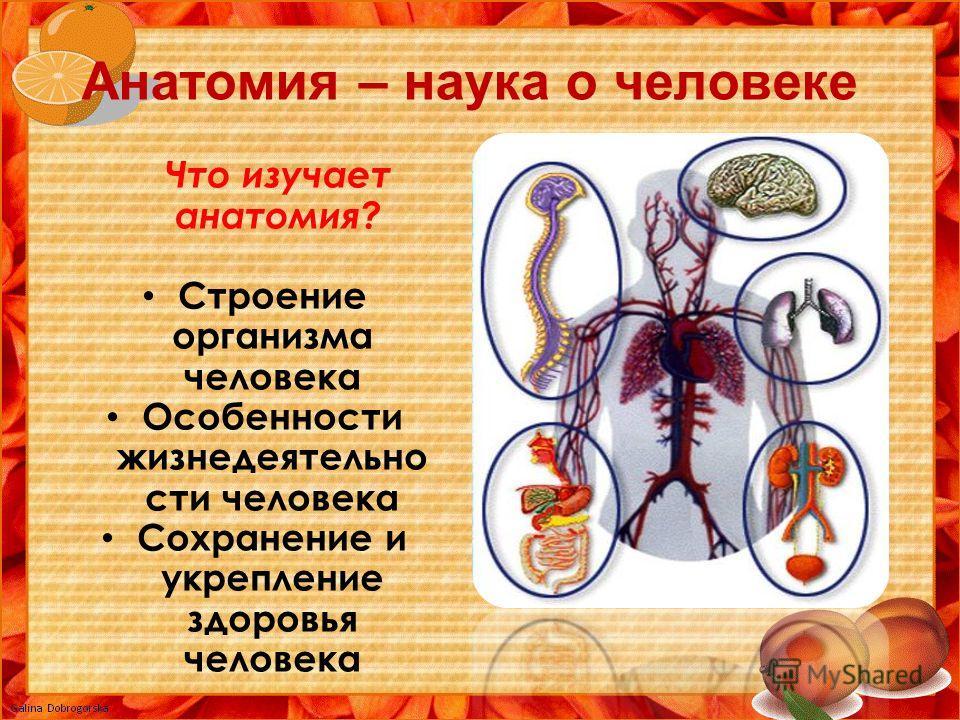 Анатомия – наука о человеке Что изучает анатомия? Строение организма человека Особенности жизнедеятельно сти человека Сохранение и укрепление здоровья человека