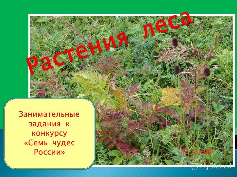 Занимательные задания к конкурсу «Семь чудес России»