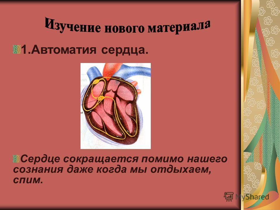 1.Автоматия сердца. Сердце сокращается помимо нашего сознания даже когда мы отдыхаем, спим.
