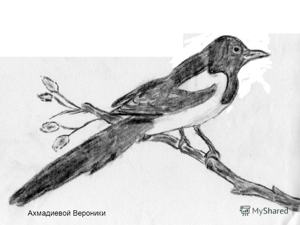 У: - Молодцы, загадки вы отгадали. Видно, что вы знаете и любите птиц. А хотите ли вы, чтобы эти птички жили здесь, возле школы, на этих деревьях и кустах? - Чтобы наше желание сбылось, его нужно написать на бумаге, а ещё лучше нарисовать. Сегодня мы