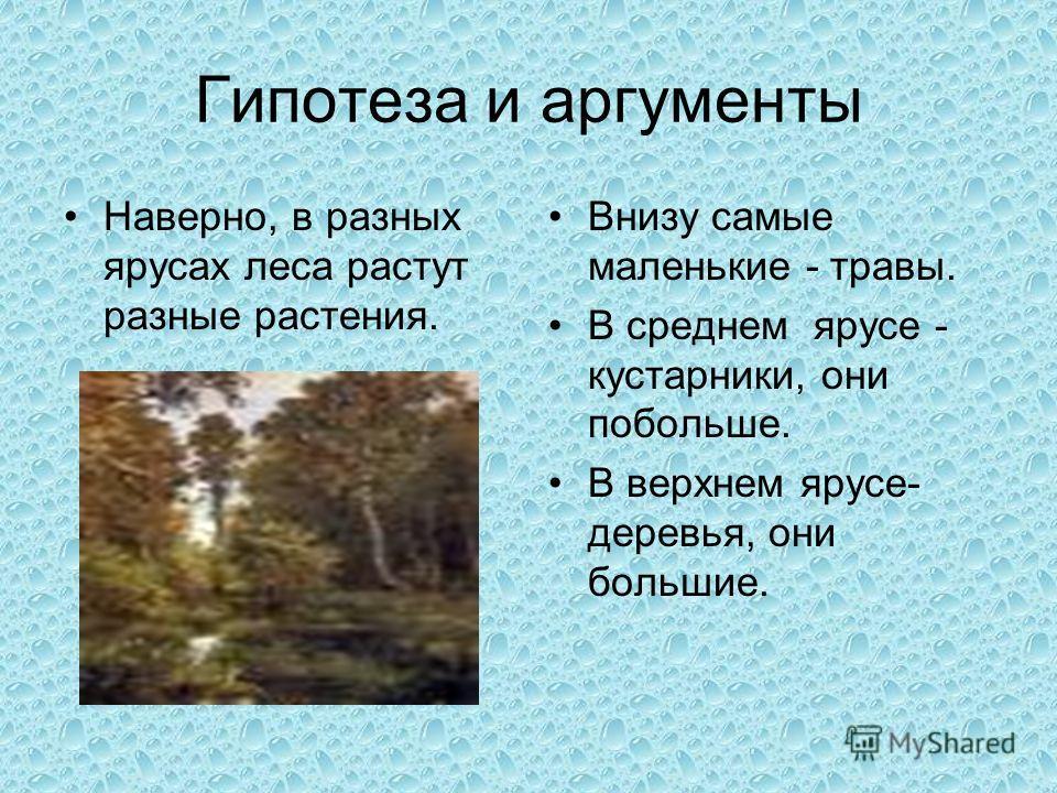 Гипотеза и аргументы Наверно, в разных ярусах леса растут разные растения. Внизу самые маленькие - травы. В среднем ярусе - кустарники, они побольше. В верхнем ярусе- деревья, они большие.