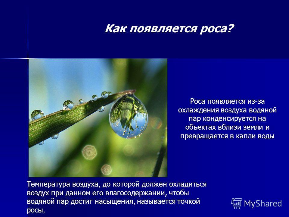 Роса появляется из-за охлаждения воздуха водяной пар конденсируется на объектах вблизи земли и превращается в капли воды Как появляется роса? Температура воздуха, до которой должен охладиться воздух при данном его влагосодержании, чтобы водяной пар д