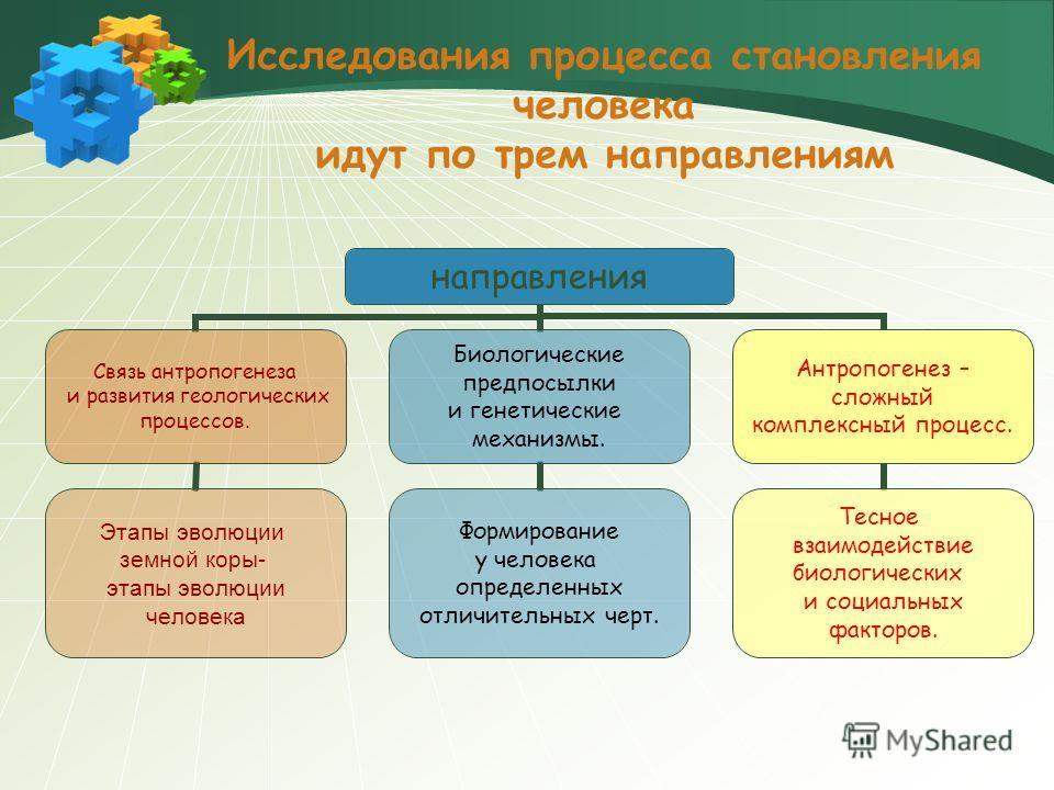 Исследования процесса становления человека идут по трем направлениям направления Связь антропогенеза и развития геологических процессов. Этапы эволюции земной коры- этапы эволюции человека Биологические предпосылки и генетические механизмы. Формирова