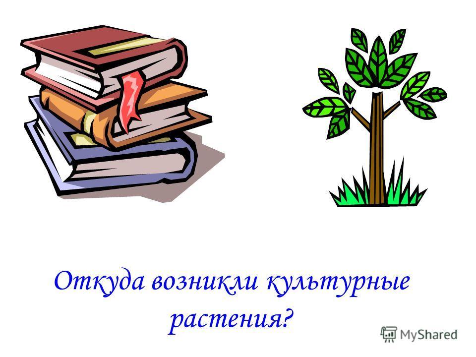 Цели урока. Осознание учащимися ценности изучаемого материала. Познакомить с растениеводством в нашем крае. Обеспечить умение классифицировать растения.