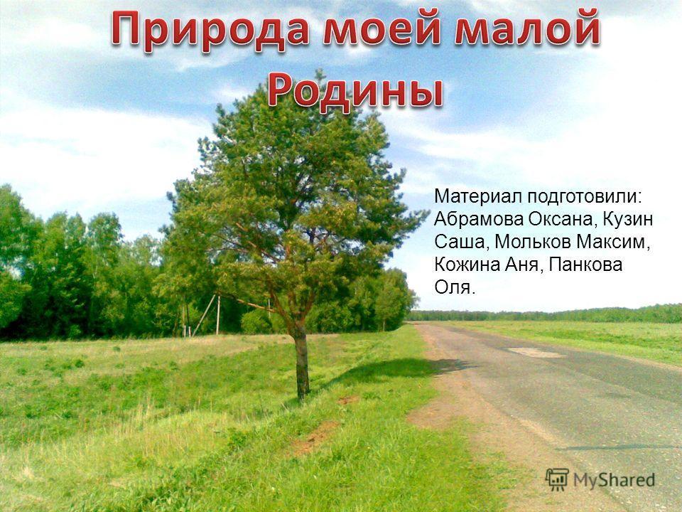 Материал подготовили: Абрамова Оксана, Кузин Саша, Мольков Максим, Кожина Аня, Панкова Оля.