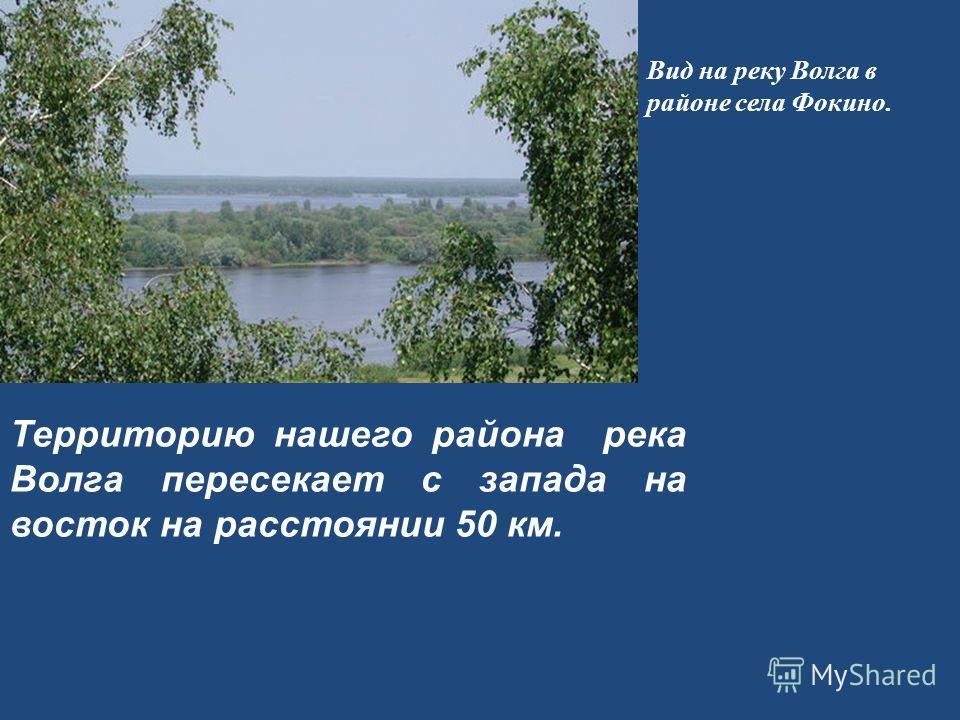Территорию нашего района река Волга пересекает с запада на восток на расстоянии 50 км. Вид на реку Волга в районе села Фокино.
