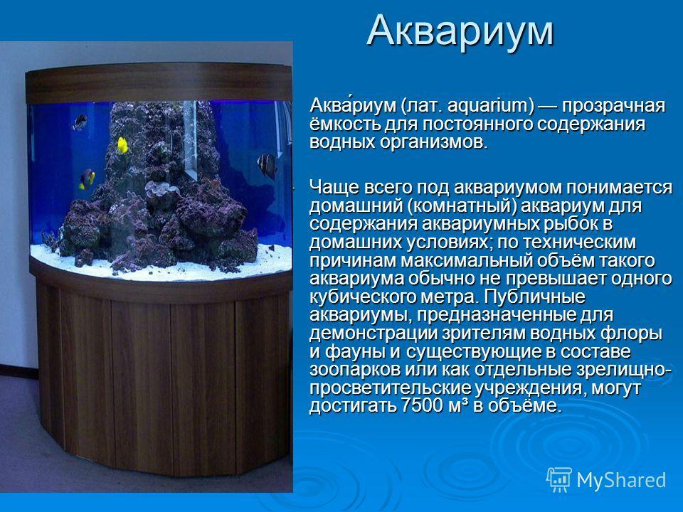 Аквариум Аква́риум (лат. aquarium) прозрачная ёмкость для постоянного содержания водных организмов. Аква́риум (лат. aquarium) прозрачная ёмкость для постоянного содержания водных организмов. Чаще всего под аквариумом понимается домашний (комнатный) а