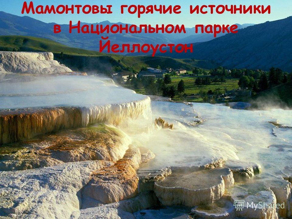 Мамонтовы горячие источники в Национальном парке Йеллоустон