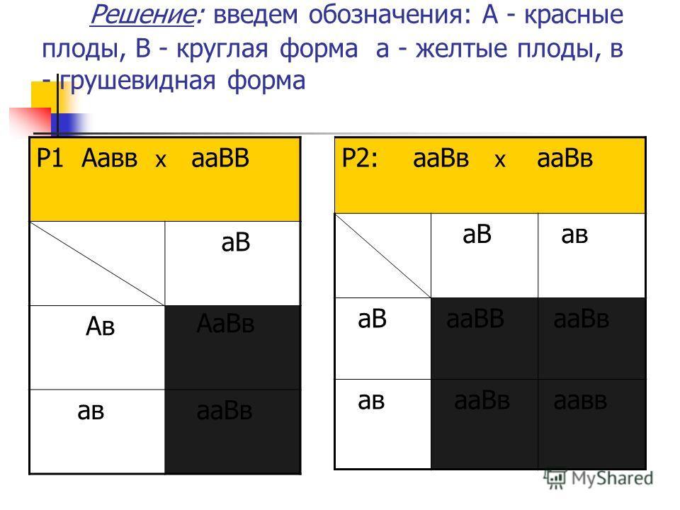 Решение: введем обозначения: А - красные плоды, В - круглая форма а - желтые плоды, в - грушевидная форма Р2: ааВв х ааВв аВ ав аВ ааВВ ааВв ав ааВв аавв Р1 Аавв х ааВВ аВ Ав АаВв ав ааВв