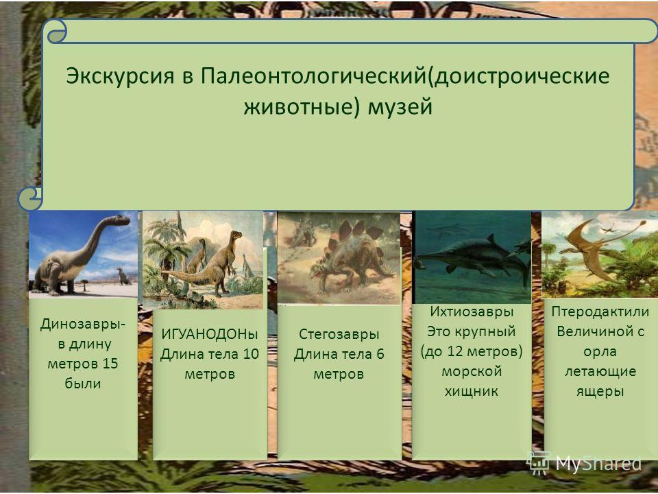 Экскурсия в Палеонтологический(доистроические животные) музей Динозавры- в длину метров 15 были Динозавры- в длину метров 15 были ИГУАНОДОНы Длина тела 10 метров ИГУАНОДОНы Длина тела 10 метров Стегозавры Длина тела 6 метров Стегозавры Длина тела 6 м