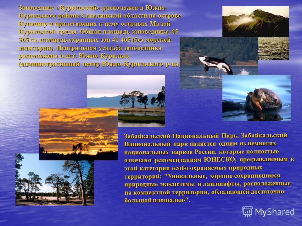 Забайкальский Национальный Парк. Забайкальский Национальный парк является одним из немногих национальных парков России, которые полностью отвечают рекомендациям ЮНЕСКО, предъявляемым к этой категории особо охраняемых природных территорий: