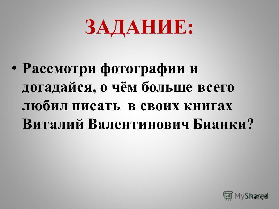 ЗАДАНИЕ: Рассмотри фотографии и догадайся, о чём больше всего любил писать в своих книгах Виталий Валентинович Бианки? Слайд 4