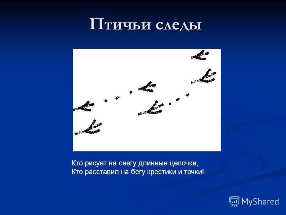 Птичьи следы Кто рисует на снегу длинные цепочки, Кто расставил на бегу крестики и точки!