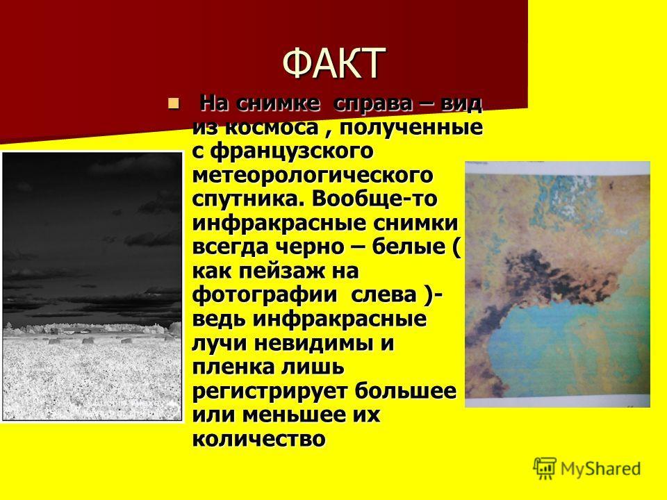 ФАКТ На снимке справа – вид из космоса, полученные с французского метеорологического спутника. Вообще-то инфракрасные снимки всегда черно – белые ( как пейзаж на фотографии слева )- ведь инфракрасные лучи невидимы и пленка лишь регистрирует большее и