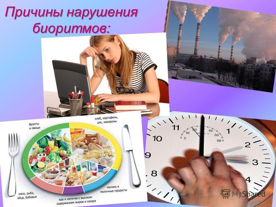 МОУ Новопоселеновская СОШ Курского района Курской области Причины нарушения биоритмов: