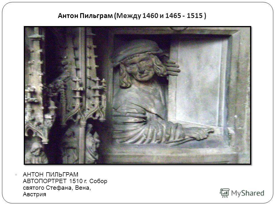Антон Пильграм ( Между 1460 и 1465 - 1515 ) АНТОН ПИЛЬГРАМ АВТОПОРТРЕТ 1510 г. Собор святого Стефана, Вена, Австрия