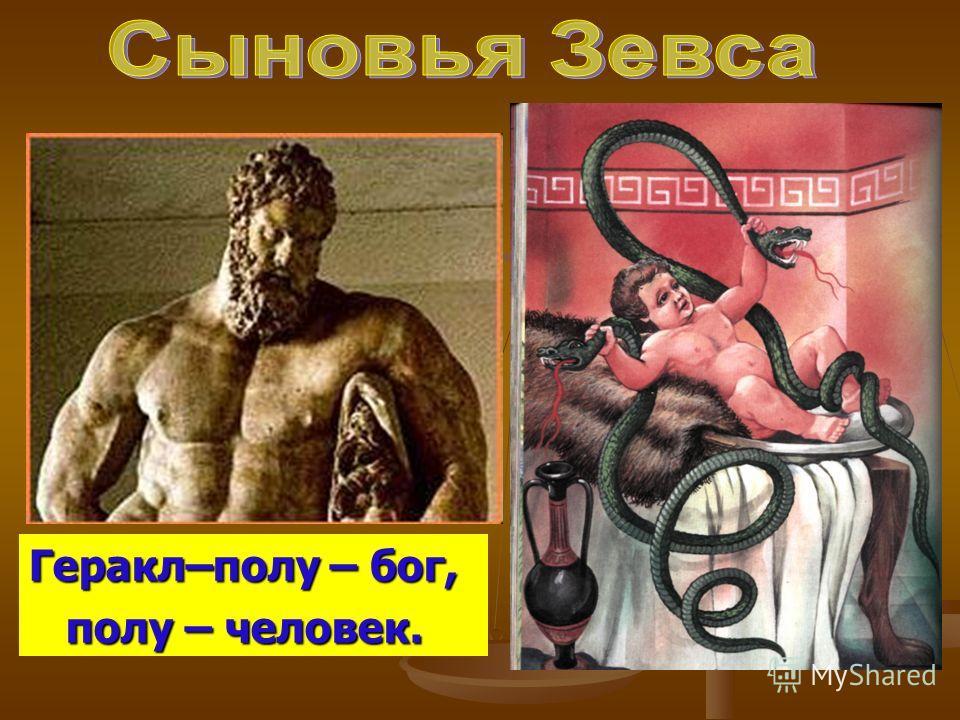 Геракл–полу – бог, полу – человек. полу – человек.