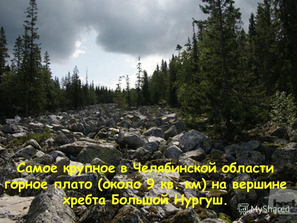 Самое крупное в Челябинской области горное плато (около 9 кв. км) на вершине хребта Большой Нургуш.