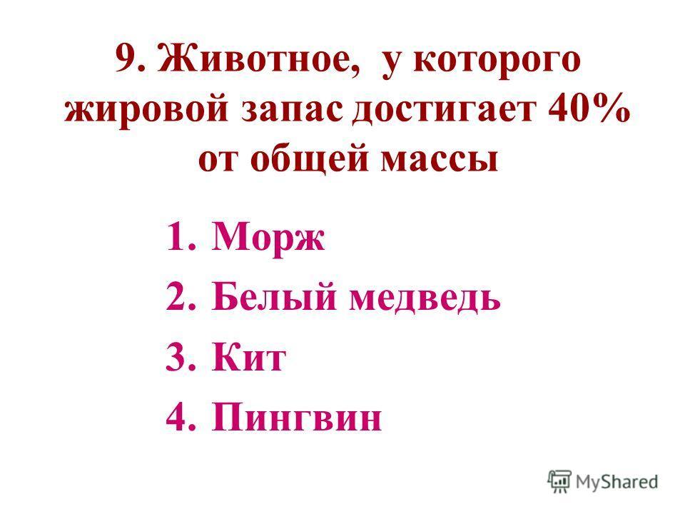 9. Животное, у которого жировой запас достигает 40% от общей массы 1.Морж 2.Белый медведь 3.Кит 4.Пингвин
