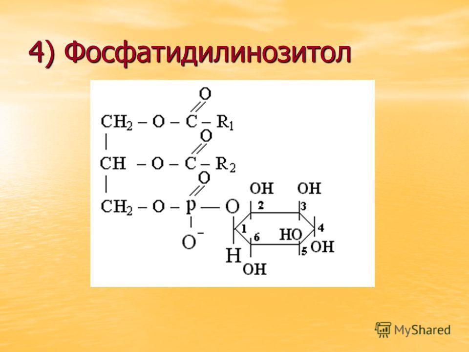 4) Фосфатидилинозитол