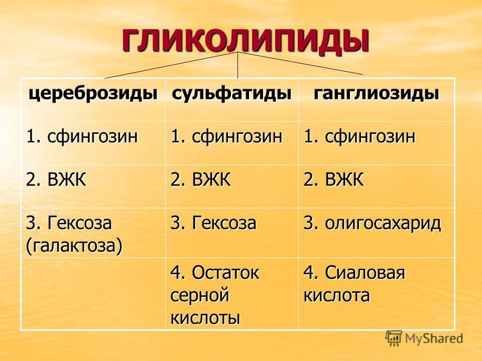 ГЛИКОЛИПИДЫ ГЛИКОЛИПИДЫ цереброзидысульфатидыганглиозиды 1. сфингозин 2. ВЖК 3. Гексоза (галактоза) 3. Гексоза 3. олигосахарид 4. Остаток серной кислоты 4. Сиаловая кислота