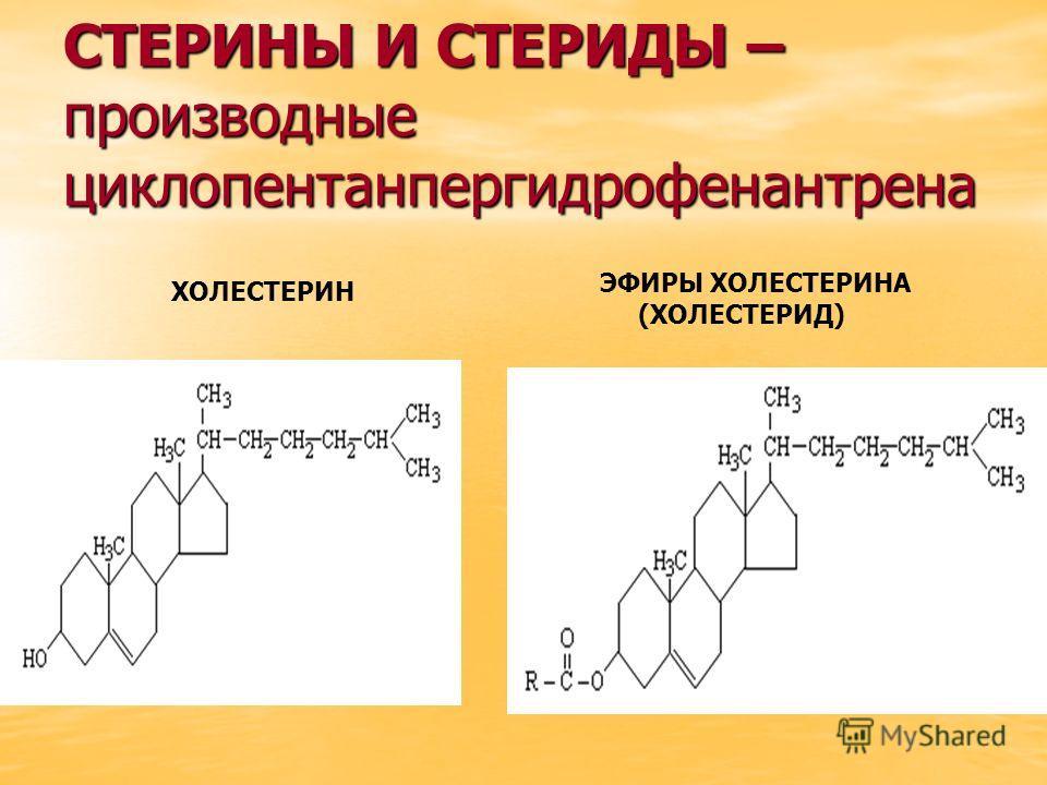 СТЕРИНЫ И СТЕРИДЫ – производные циклопентанпергидрофенантрена ХОЛЕСТЕРИН ЭФИРЫ ХОЛЕСТЕРИНА (ХОЛЕСТЕРИД)