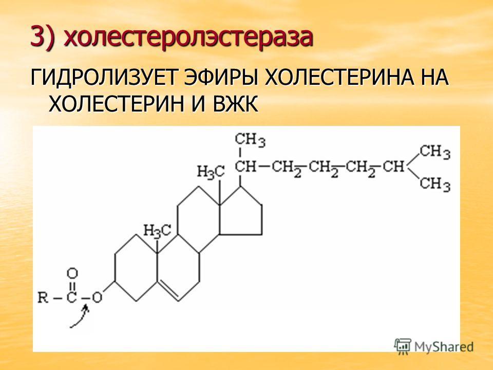 3) холестеролэстераза ГИДРОЛИЗУЕТ ЭФИРЫ ХОЛЕСТЕРИНА НА ХОЛЕСТЕРИН И ВЖК