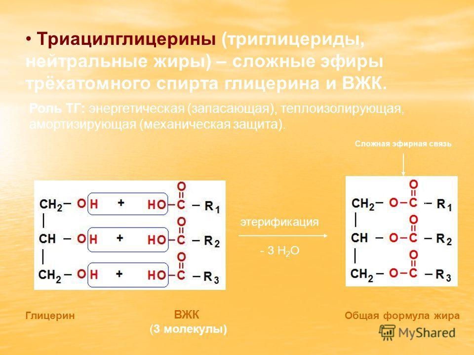 Триацилглицерины (триглицериды, нейтральные жиры) – сложные эфиры трёхатомного спирта глицерина и ВЖК. Роль ТГ: энергетическая (запасающая), теплоизолирующая, амортизирующая (механическая защита). ГлицеринОбщая формула жира ВЖК (3 молекулы) Сложная э