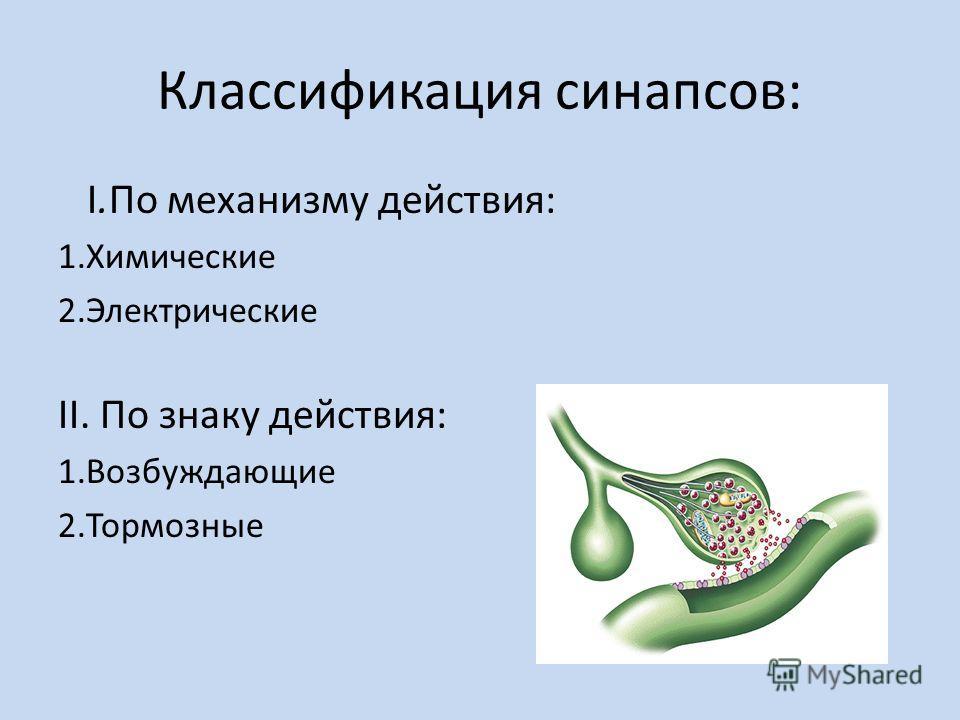 Классификация синапсов: I.По механизму действия: 1.Химические 2.Электрические II. По знаку действия: 1.Возбуждающие 2.Тормозные