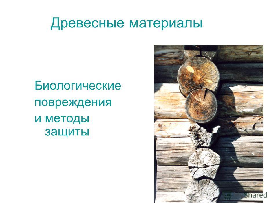 Древесные материалы Биологические повреждения и методы защиты