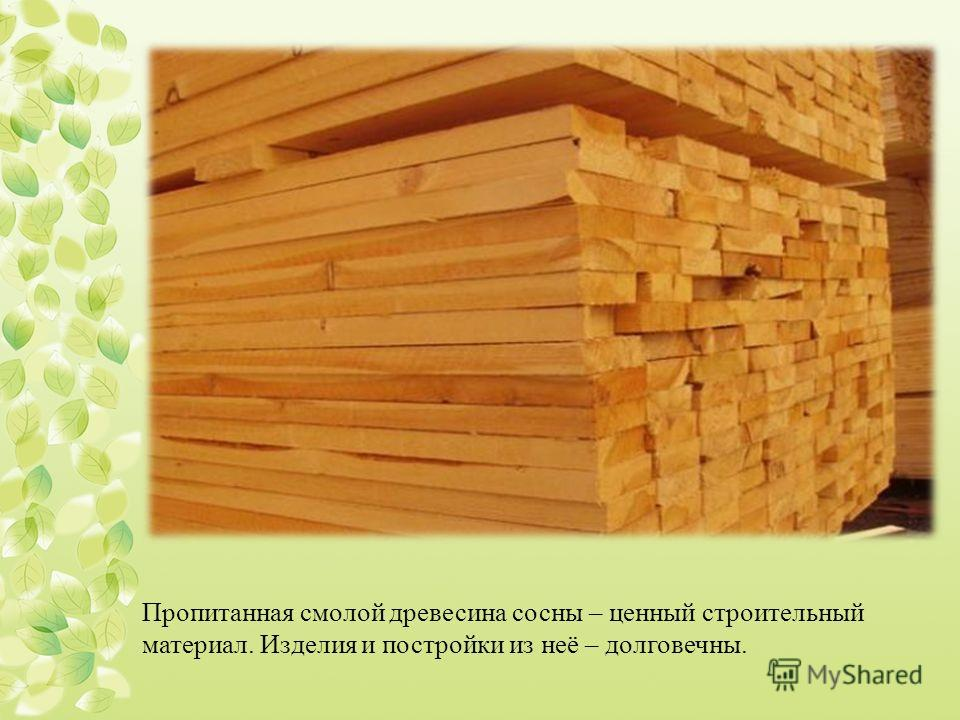 Пропитанная смолой древесина сосны – ценный строительный материал. Изделия и постройки из неё – долговечны.