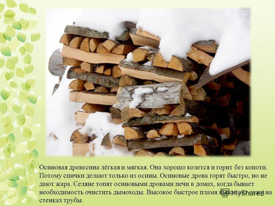 Осиновая древесина лёгкая и мягкая. Она хорошо колется и горит без копоти. Потому спички делают только из осины. Осиновые дрова горят быстро, но не дают жара. Селяне топят осиновыми дровами печи в домах, когда бывает необходимость очистить дымоходы.