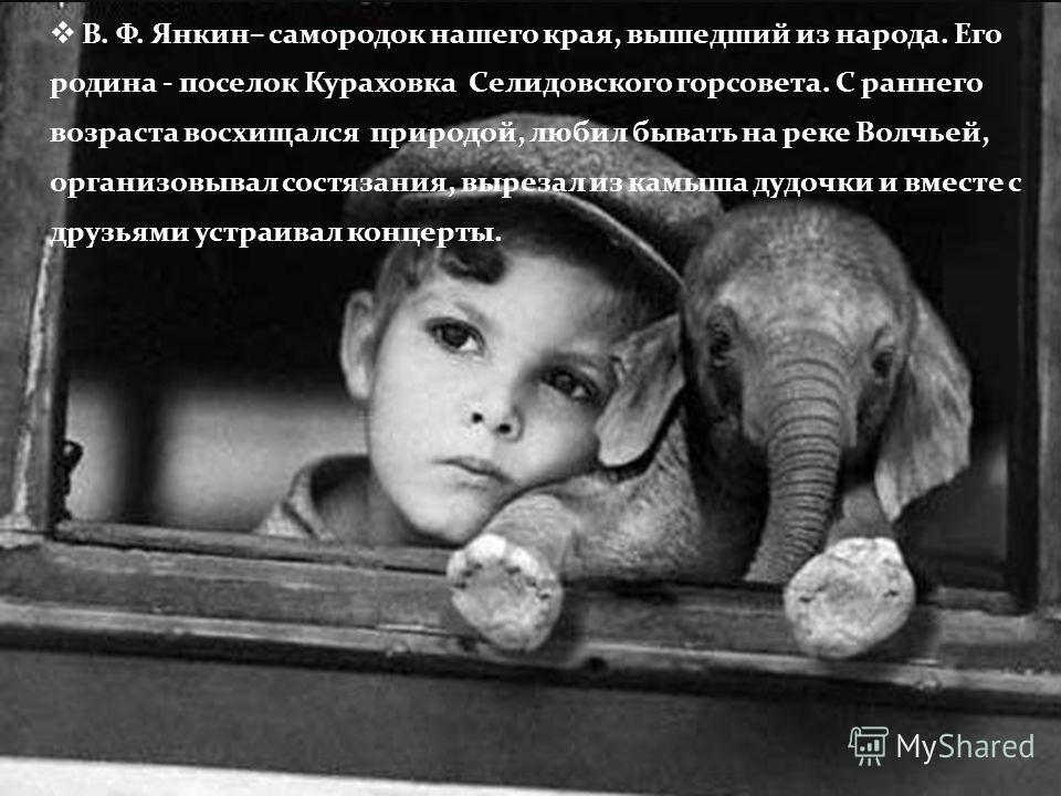 В. Ф. Янкин – самородок нашего края, вышедший из народа. Его родина - поселок Кураховка Селидовского горсовета. С раннего возраста восхищался природой, любил бывать на реке Волчьей, организовывал состязания, вырезал из камыша дудочки и вместе с друзь