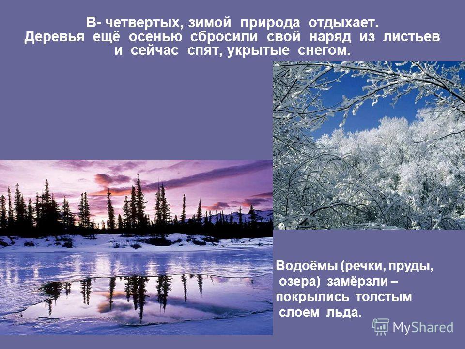В- четвертых, зимой природа отдыхает. Деревья ещё осенью сбросили свой наряд из листьев и сейчас спят, укрытые снегом. Водоёмы (речки, пруды, озера) замёрзли – покрылись толстым слоем льда.