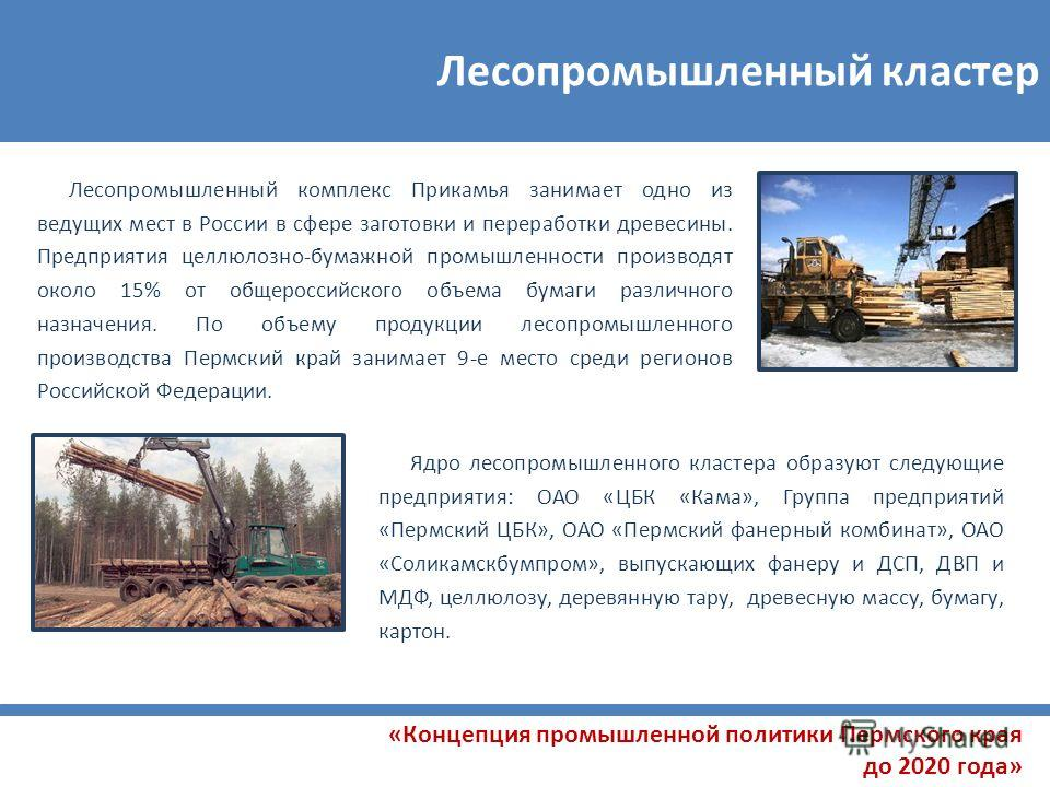 Лесопромышленный кластер Лесопромышленный комплекс Прикамья занимает одно из ведущих мест в России в сфере заготовки и переработки древесины. Предприятия целлюлозно-бумажной промышленности производят около 15% от общероссийского объема бумаги различн