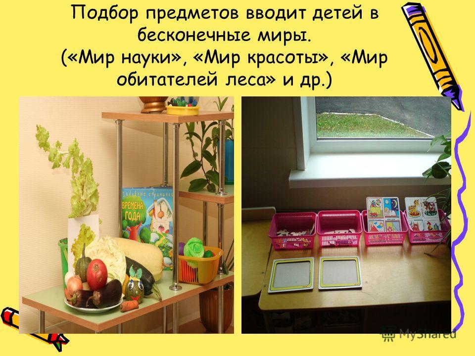 Подбор предметов вводит детей в бесконечные миры. («Мир науки», «Мир красоты», «Мир обитателей леса» и др.)