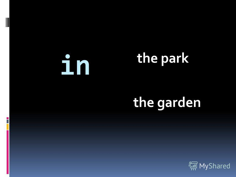 in the park the garden