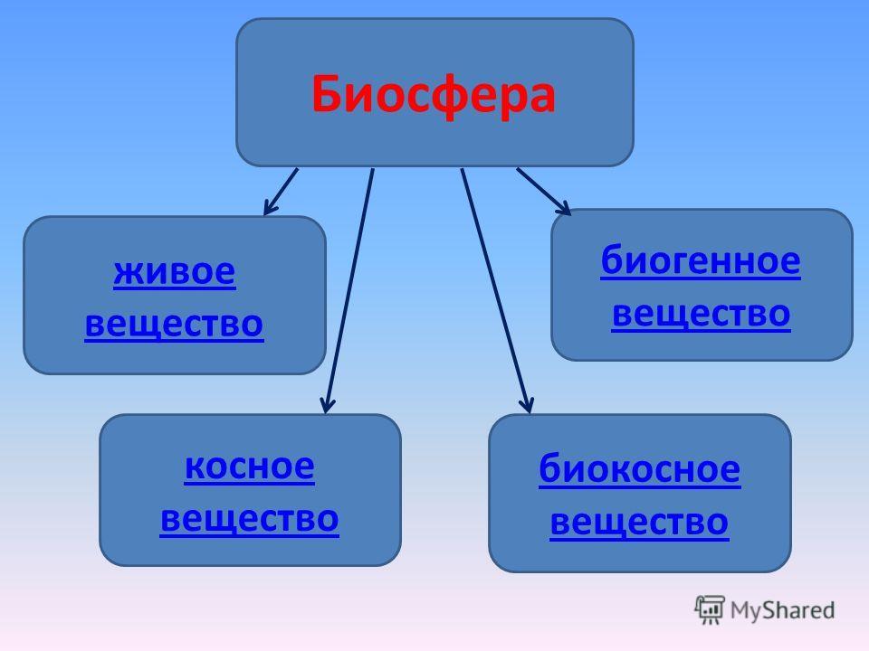 Биосфера живое вещество биогенное вещество косное вещество биокосное вещество