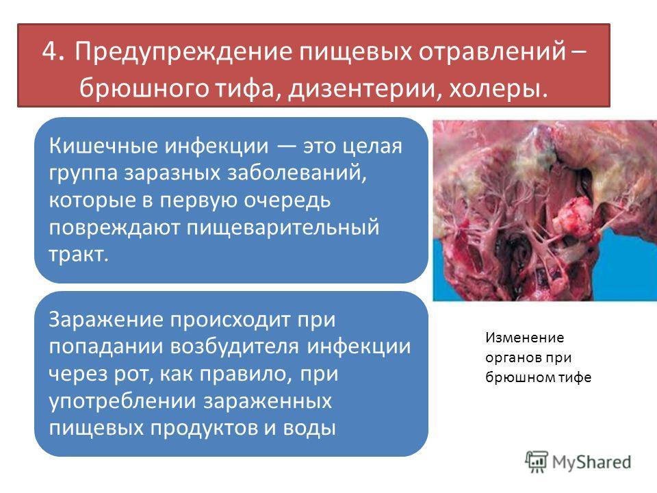 4. Предупреждение пищевых отравлений – брюшного тифа, дизентерии, холеры. Кишечные инфекции это целая группа заразных заболеваний, которые в первую очередь повреждают пищеварительный тракт. Заражение происходит при попадании возбудителя инфекции чере