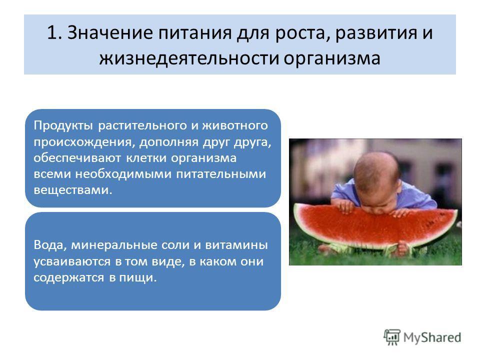 1. Значение питания для роста, развития и жизнедеятельности организма Продукты растительного и животного происхождения, дополняя друг друга, обеспечивают клетки организма всеми необходимыми питательными веществами. Вода, минеральные соли и витамины у