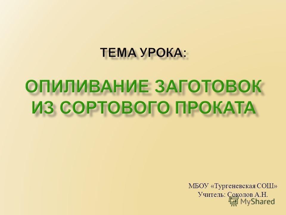 МБОУ « Тургеневская СОШ » Учитель : Соколов А. Н.