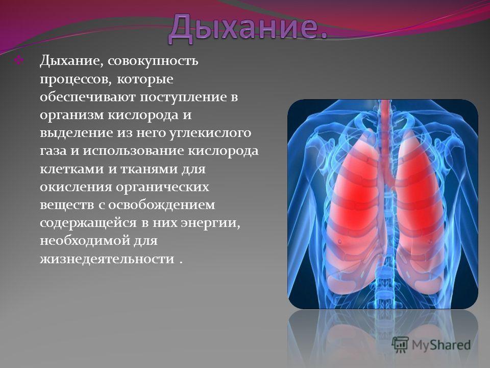 Дыхание, совокупность процессов, которые обеспечивают поступление в организм кислорода и выделение из него углекислого газа и использование кислорода клетками и тканями для окисления органических веществ с освобождением содержащейся в них энергии, не